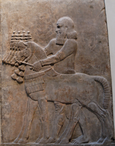 Conducteur de chevaux, Palais de Sargon, Khorsabad, Louvre AO 19883