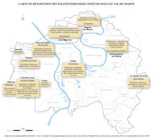 Fig. 2. Carte de répartition des principales maladies répertoriées dans le Val-de-Marne