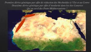 Fig. 1. Dès le VIIIe millénaire, l'expansion orientale des Proto-Méditerranéens capsiens pousse les Mechtoïdes vers le centre, l'ouest et le sud. Le haplogroupe de l'ADN mit. U6 b1, caractéristique des nord-africains, présent depuis 3600 ans dans les Canaries montre l'ancienneté de l'isolement insulaire des Mechtoïdes, © D. Hadjouis